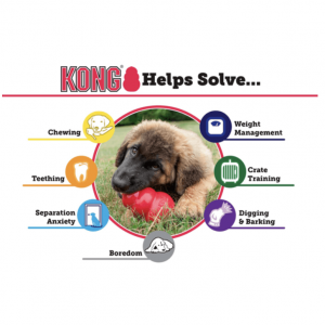 Monte & Co | Kong Extreme Dog Toy Benefits