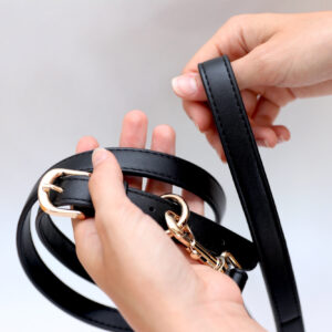 Monte & Co | Designer Dog Lead by St Argo | Black