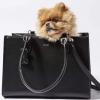 Monte & Co   St Argo Black Lola Dog Cat Travel Tote Bag