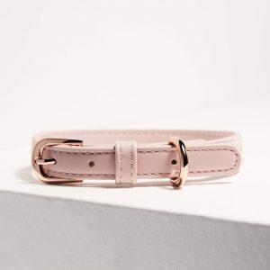 Monte & Co | Designer Dog Cat Collar in Pale Pink by St Argo