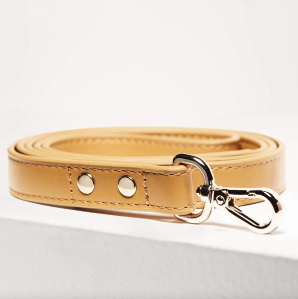Monte & Co | Designer Pet Dog Cat Lead by St Argo Melbourne | Mustard Yellow Gold