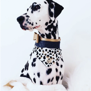 Monte & Co | The Kenya Scarf Bandana by HGP Luxury Pet Accessories