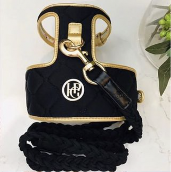 Monte & Co | The Coco Midnight Black & Gold Quilted Pet Dog Cat Harness by HGP Luxury Pet Accessories