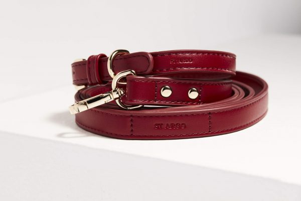 Monte & Co   Designer Pet Dog Cat Collar and Lead Set in Ruby Red   by St Argo Melbourne