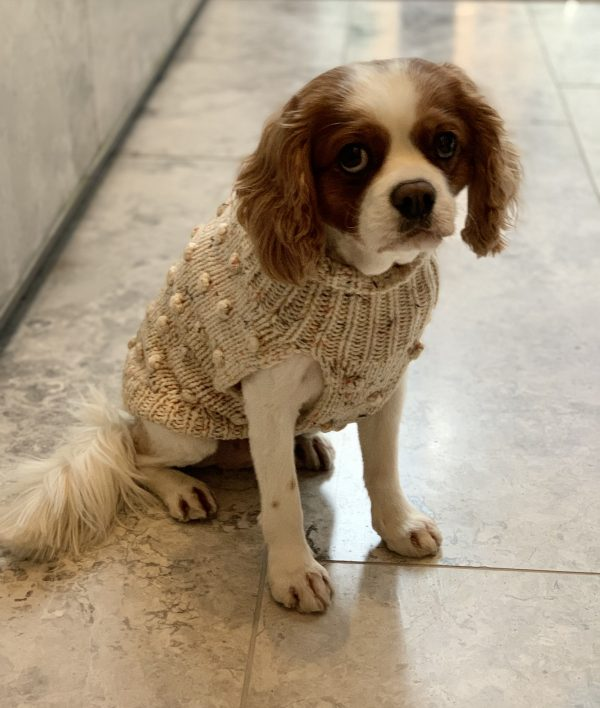 Monte & Co | Luxury Merino Wool Bobble Chunky Knit in Speckle Oatmeal by Sebastian Says