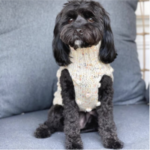 Monte & Co | Merino wool bobble chunky knit dog jumper sweater in Speckle by Sebastian Says | @toulouse.the.cavoodle