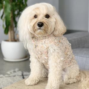 Monte & Co | Merino wool bobble knit dog jumper sweater in Speckle by Sebastian Says