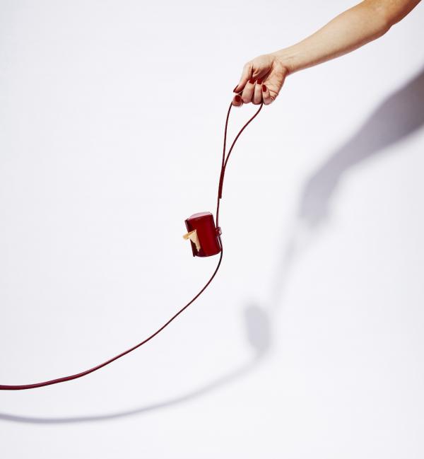 Monte & Co | Ruby Red Designer Poop Bag Holder and Lead Set by St Argo