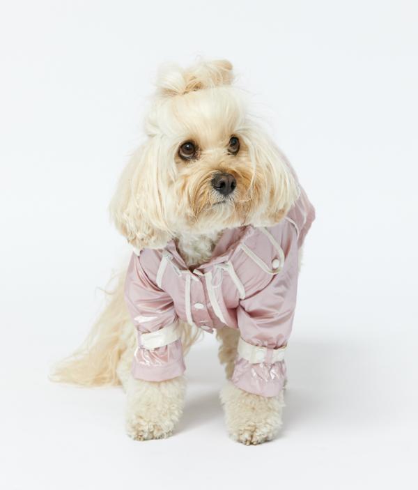 Monte & Co | Designer pet dog cat raincoat by Sebastian Says | Soft Pink