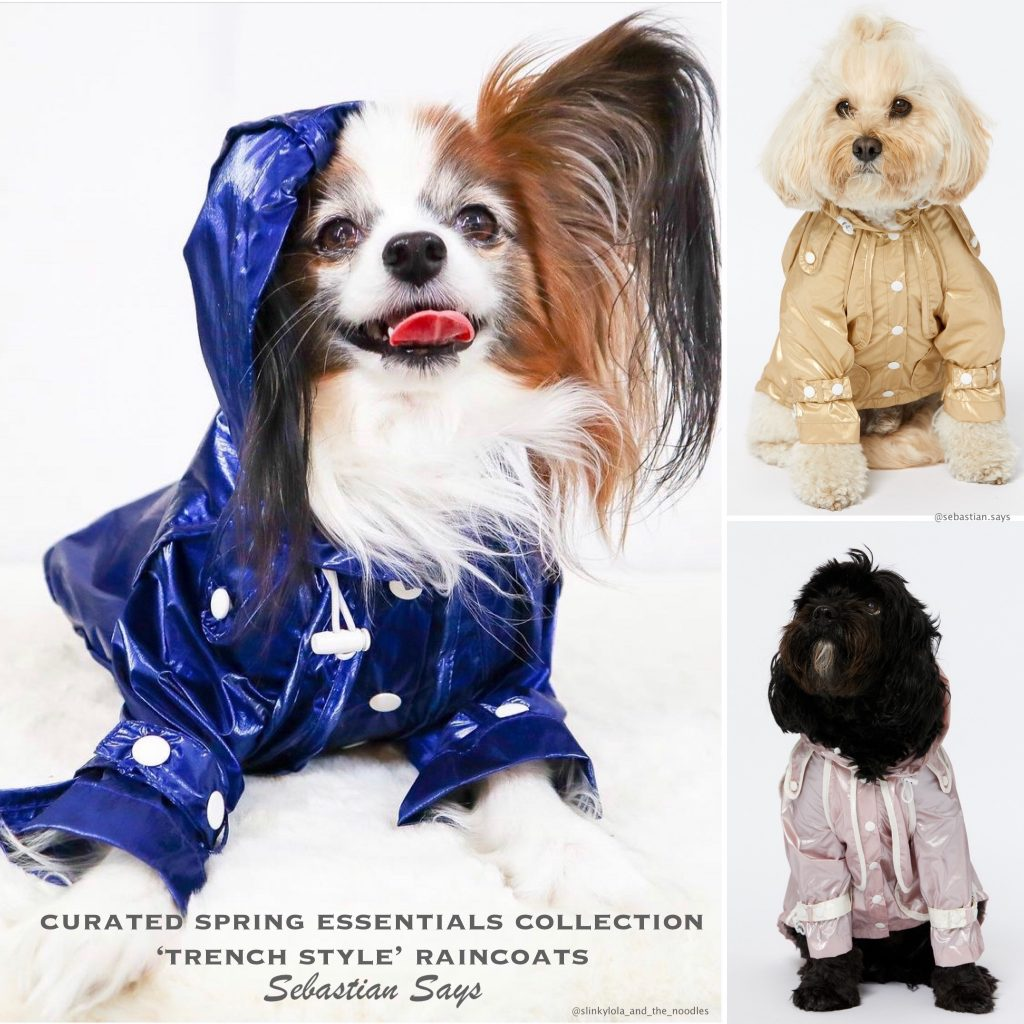 Monte & Co | Curated Designer Raincoat Trench Coat Collection for pampered pets dogs cats