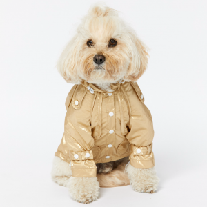 Monte & Co | Designer dog cat pet raincoat trench by Sebastian Says | Gold (Lifestyle)