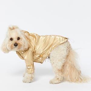 Monte & Co | Designer dog cat pet raincoat trench by Sebastian Says | Gold (Lifestyle Side Profile)