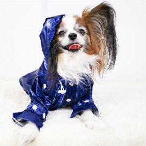 Monte & Co | Designer dog raincoat trench coat by Sebastian Says | Cobalt Blue