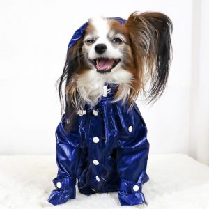 Monte & Co | Designer dog raincoat trench coat by Sebastian Says | Cobalt Blue (Lifestyle)