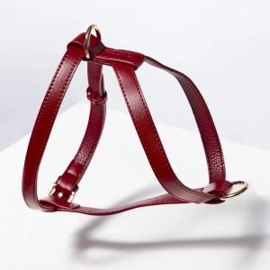 Monte & Co | Designer Luxury Pet Cat Dog Harness by St Argo | Ruby Red