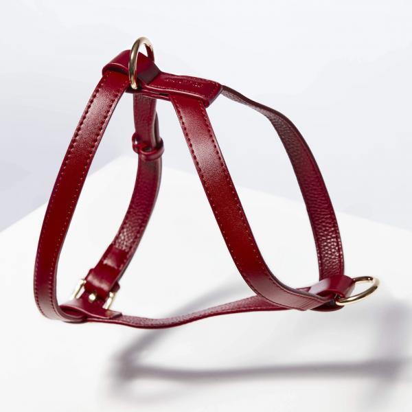 Monte & Co   Designer Luxury Pet Cat Dog Harness by St Argo   Ruby Red