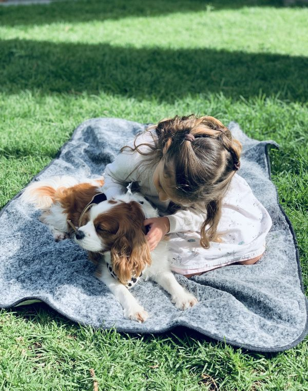 Monte & Co   SupaDry Luxe Indoor:Outdoor Picnic Blanket by SNOOZA AUSTRALIA